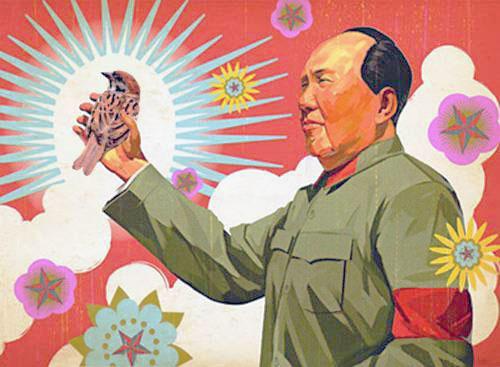 Uccidete i passeri Mao