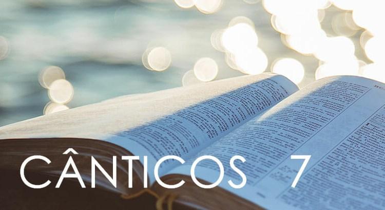 CÂNTICOS 7
