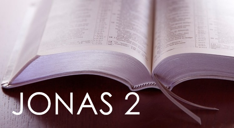 JONAS 2