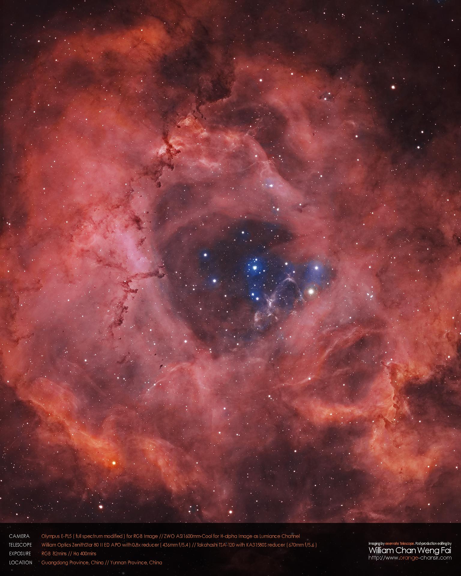 玫瑰星雲( NGC 2237 )