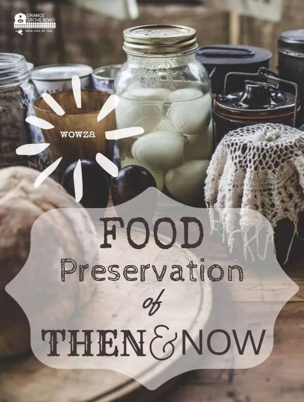 food preservation of then and now