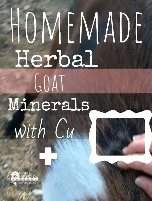 homemade herbal mineral mix {high in copper} for goats