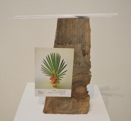 """Stump 1""/Linfield Gallery"