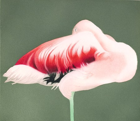 """""""Flamingo Sleeping,"""" 1988, Edition of 30. Aquatint and drypoint with roulette, 13.25 x 11.5 inches. All images © E. Mark Adams and Beth Van Hoesen Adams Trust. Courtesy Pomegranate Communications, Inc. All rights reserved."""