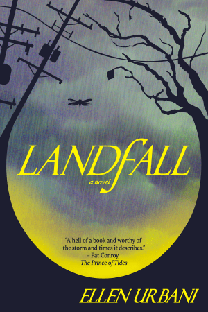 Landfall cover from FA