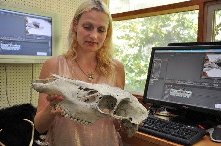Oldham examines a recently obtained skeletal skull that she will use for inspiration in her work. Image Sabina Poole.