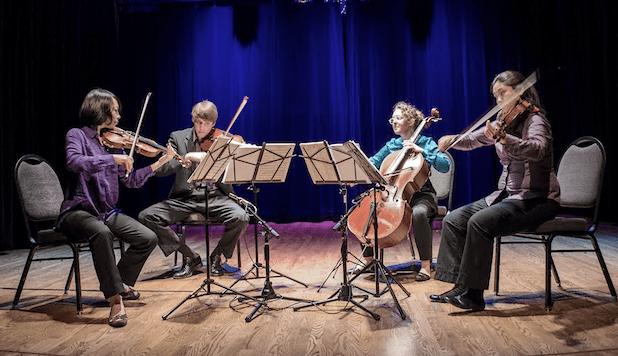 Delgani Quartet. Photo: Bridie Harrington.