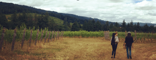 Music at the wineries: a new Oregon chamber festival goes for the gusto.