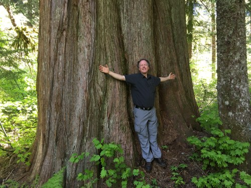 Poet laureate and giant cedar: words and the land. Photo courtesy Kim Stafford