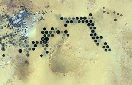 Libya_s_Al_Jawf_oasis_large