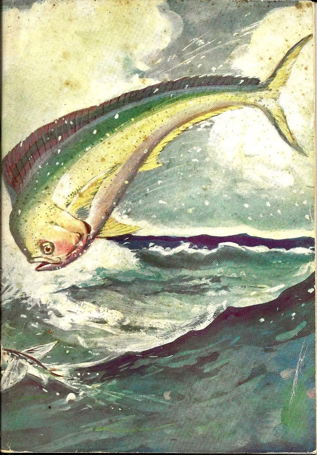 A&F 1940 Catalog