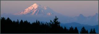 Mountain view copy