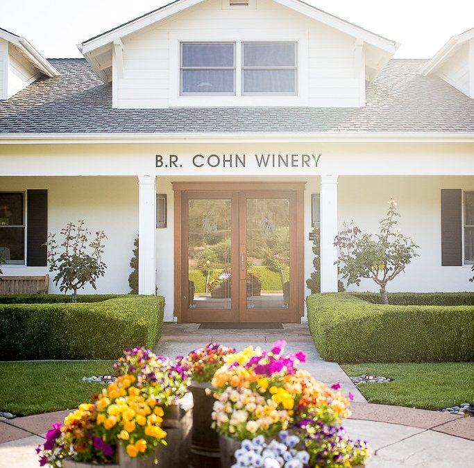 Fun Things To Do in Sonoma, CA