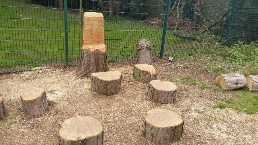 Seats Carved from Pine Wood at a Primary School