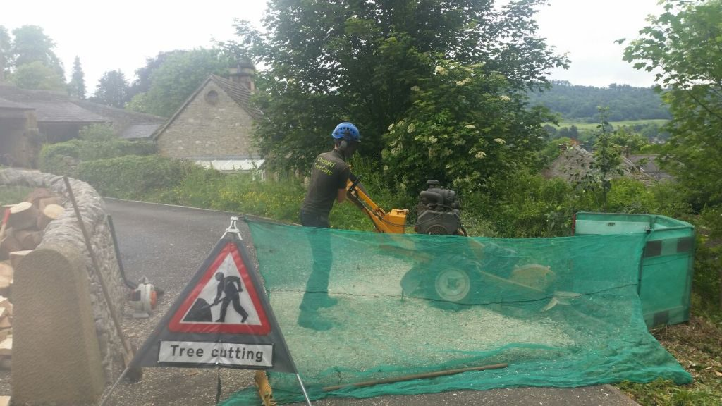 Stump Grinding in Bakewell