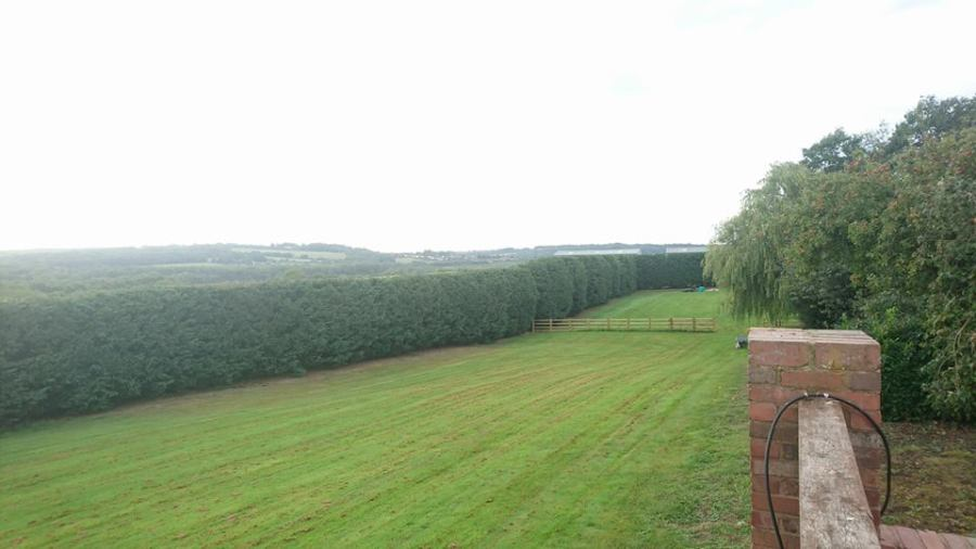 Round 2 Hedge Maintenance, Brinsley, Nottinghamshire, NG16