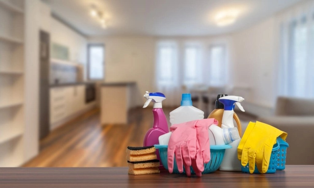 Recurring Cleaning Services Orchid Cleaning Services