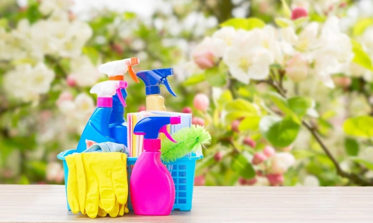 Spring Cleaning Orchid Cleaning Services