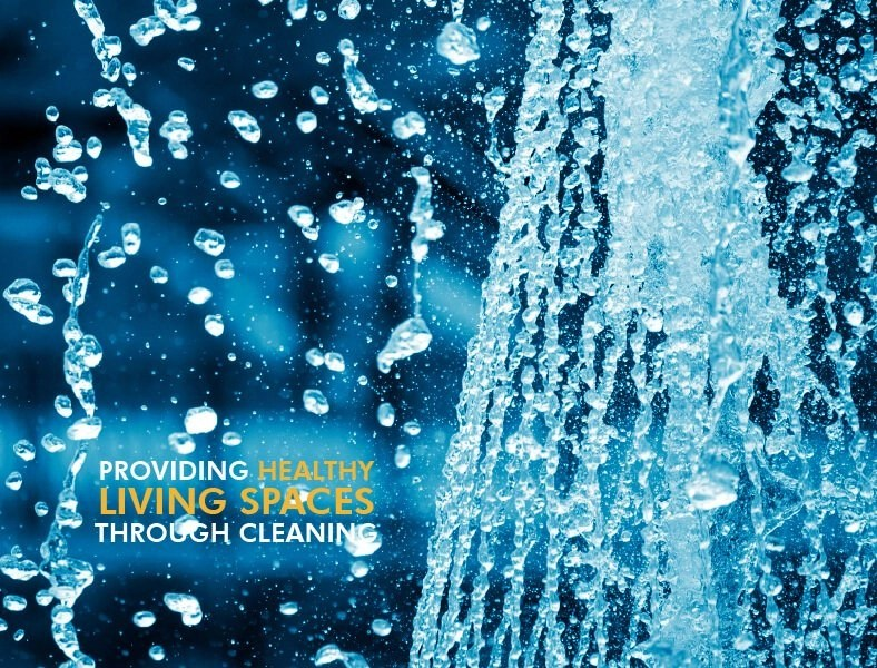 Pressure Washing Orchid Cleaning Services