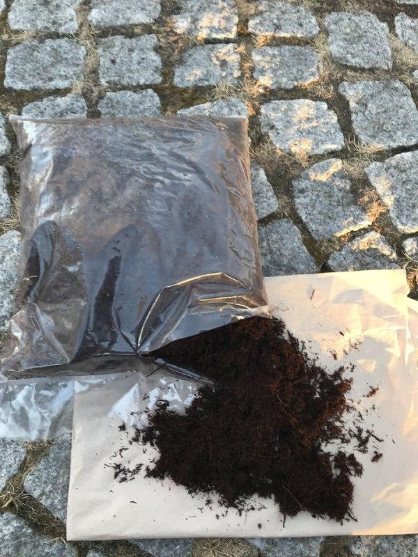 Öppnad påse med Dicksonia (tree fern)