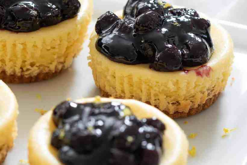 Lemon Cheesecake Bites w/ Blueberries