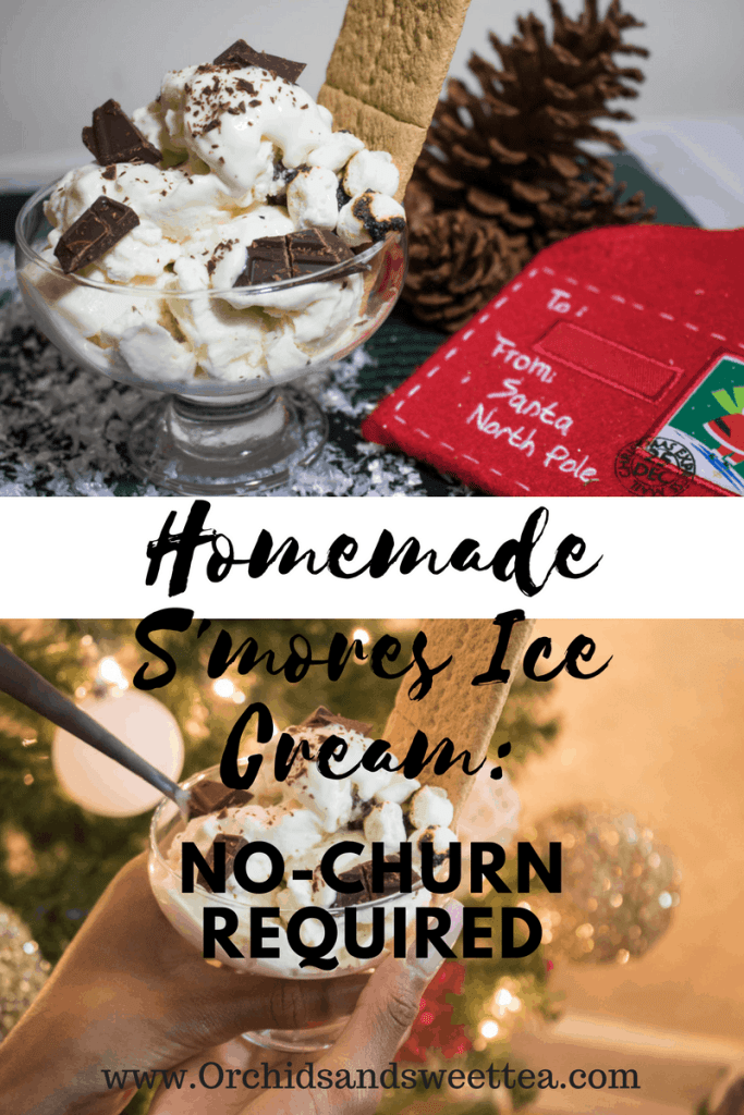 Homemade S'mores Ice Cream: No-Churn Required