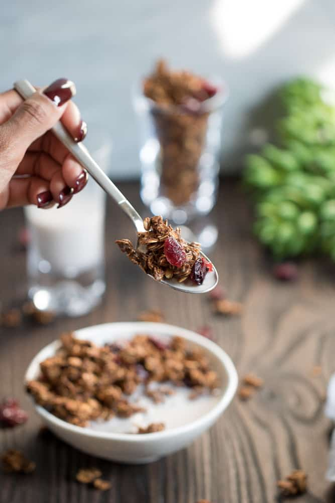 Healthy Chocolate Hazelnut Granola w/ Cranberries