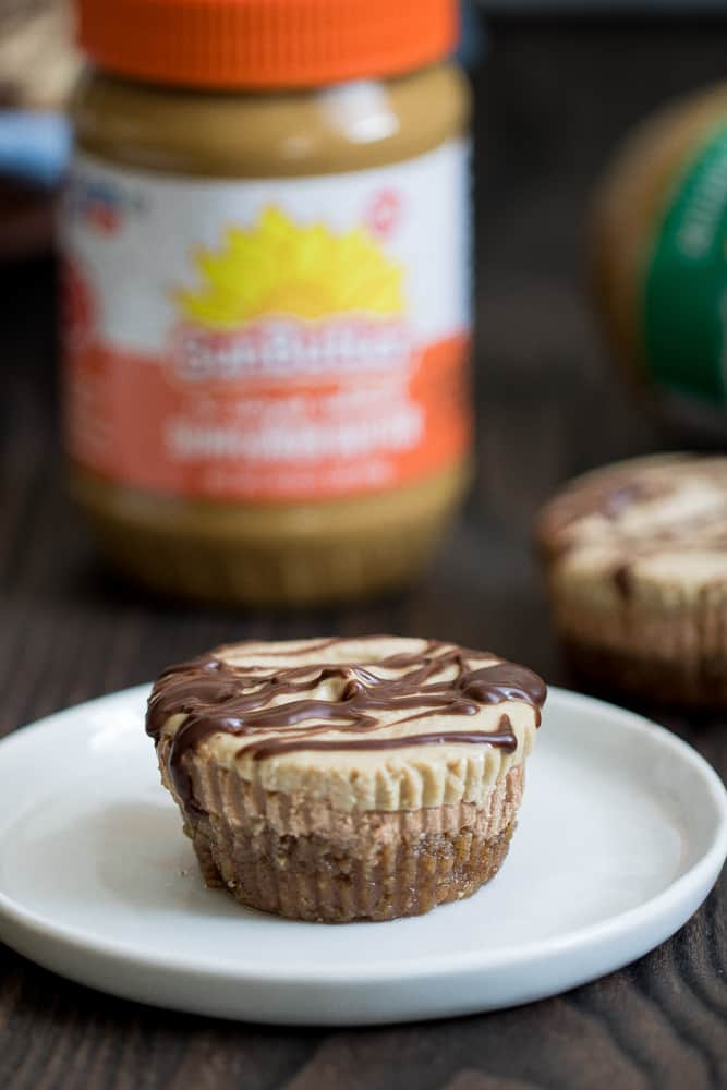Vegan Chocolate + SunButter Cheesecake Bites