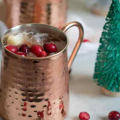 Cranberry Apple Cider Orange Sangria