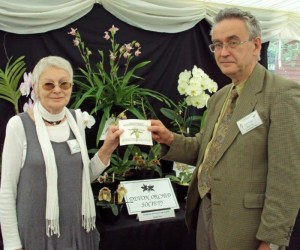 Orchid Festival prize award