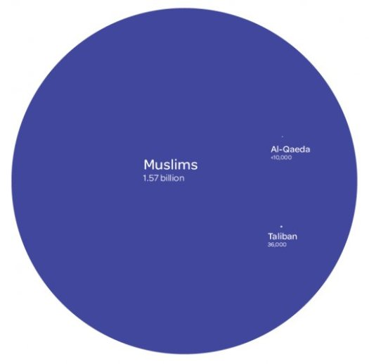 Muslimer vs terrorister