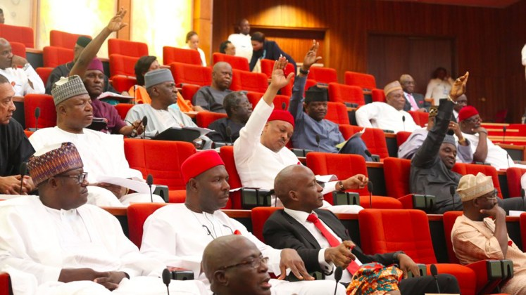 "Image result for Senate adopts ""Not Too Young to Run"" bill, to transmit to Buhari"