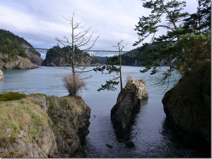 Rocks and water with evergreen trees in the foreground and a large metal bridge in the background
