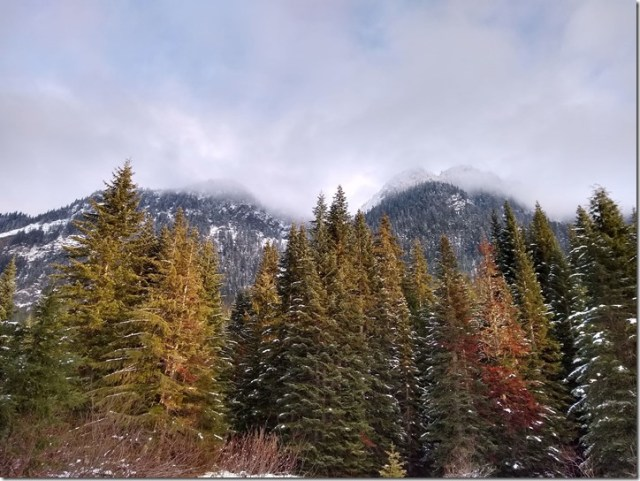 Gold Creek Valley Snowshoe