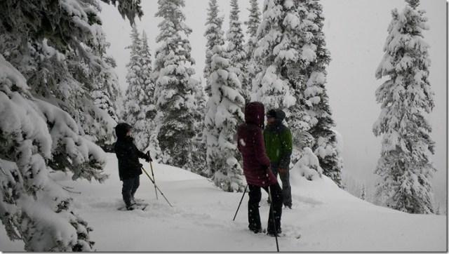 three snowshoers in heavy new snow and fog on hurricane ridge