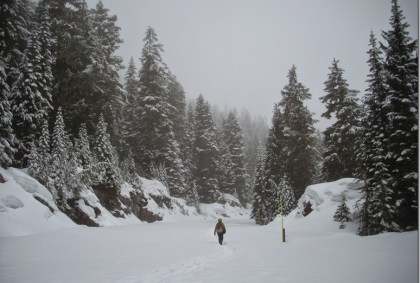Woman walking on a snowy road through the forest on a snowy day