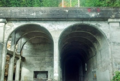 An old concrete tunnel coming out of a forested mountain. The left side of the tunnel is covered, the right side has an open gate