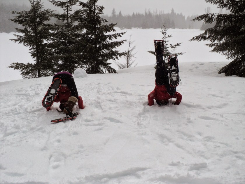 Two people wearing snowshoes are doing headstands poorly in a snowy meadow surrounded by evergreen trees on a foggy day