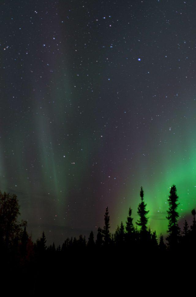 Purple and green aurora light the sky on a dark night.