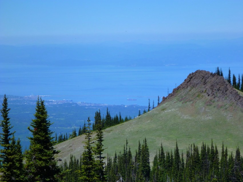 The town of Port Angeles is seen far below a mountain viewpoint. There are trees and meadows in the foreground and water and distant mountains in the background