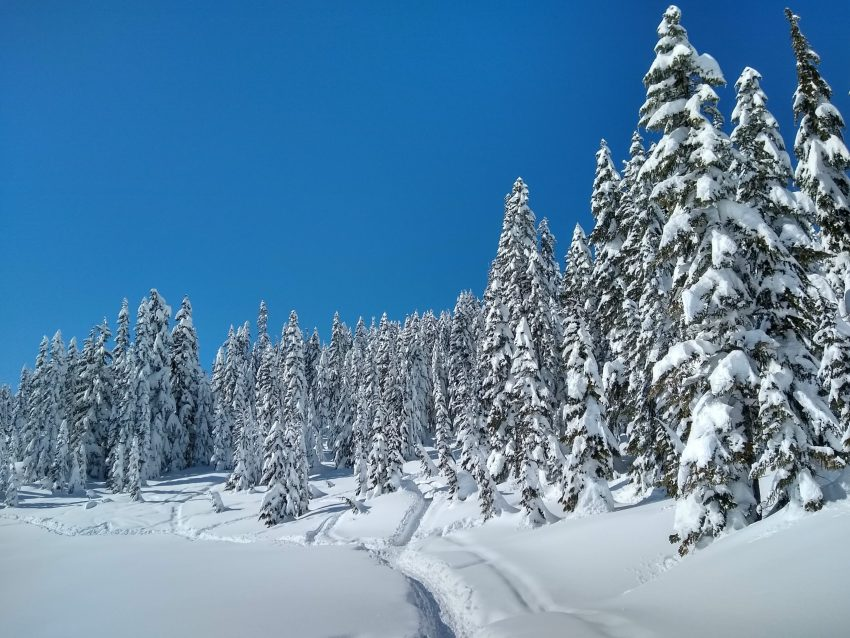 Skyline lake snowshoe trail takes you to beautiful frozen Skyline lake, surrounded by snowy forests