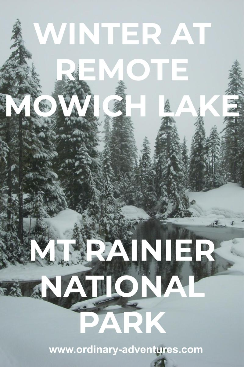 A snowy forest with a part of an unfrozen lake winding through it on a cloudy day. Text reads: winter at remote Mowich lake Mt Rainier National Park