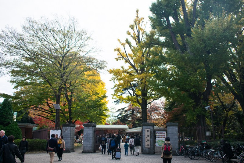 shinjuku gyoen entrance