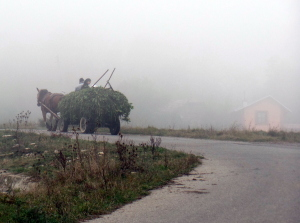 A horse cart in the mist along a Romanian highway.