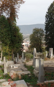 Lovely cemetery in Sighisoara, in the Transylvania Region of Romania. No Dracula jokes, please.