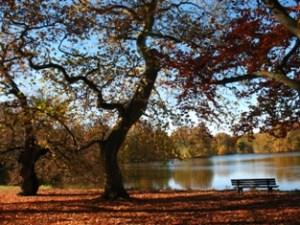 27_Herbst