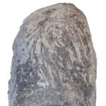 trichophycus 250 white 2