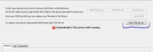 TinyUmbrella TSS Server Start button