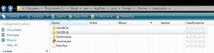 Google Chrome: file di sistema