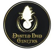DUSTED BUD GENETICS